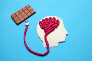 Schematic of a man with Chocolate plugged into the Brain